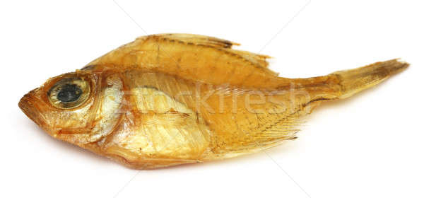Dried Elongate glassy perchlet Stock photo © bdspn