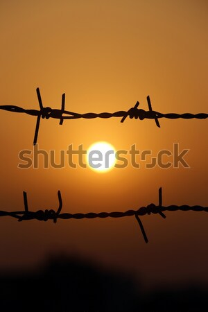 Setting sun behind barbed wire Stock photo © bdspn