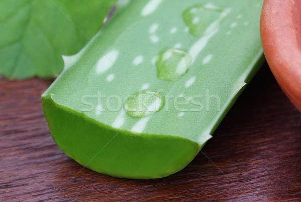 Aloés folhas saudável nutrição Foto stock © bdspn