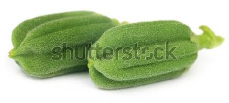 Zöld szezám virág étel természet levél Stock fotó © bdspn