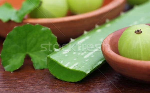 Aloë bladeren voedsel vruchten Stockfoto © bdspn