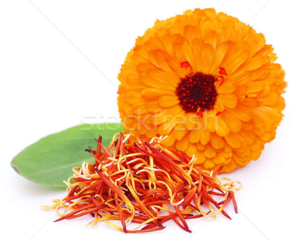 Closeup of calendula with green leaf Stock photo © bdspn