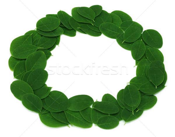 Ehető levelek gyártmány keret fehér háttér Stock fotó © bdspn