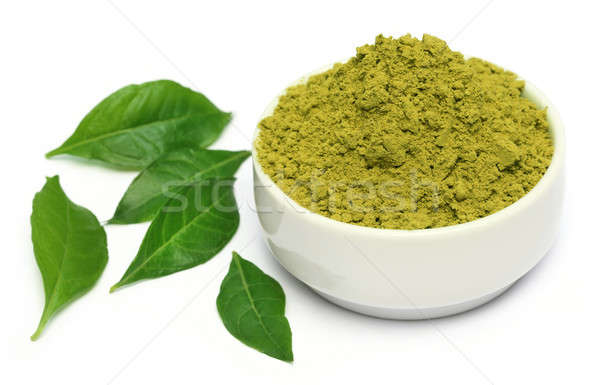 Henna leaves with powder on ceramic bowl  Stock photo © bdspn
