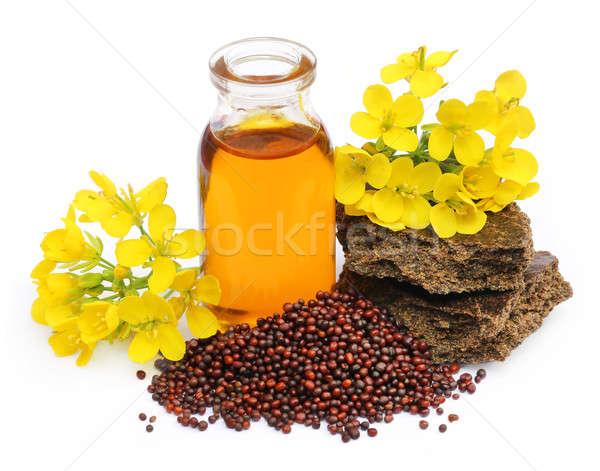 Mustár olaj torta virág üveg mag Stock fotó © bdspn