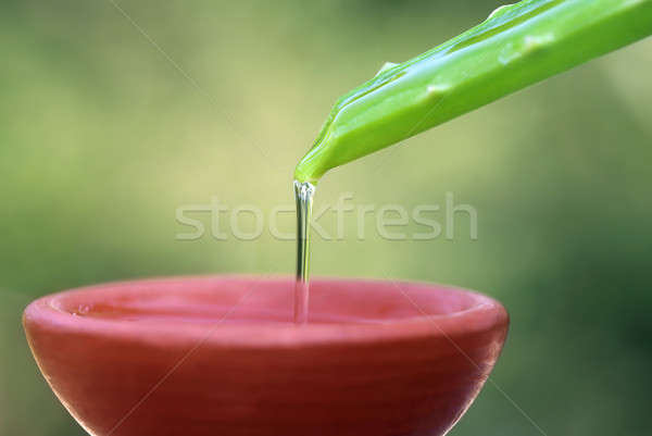 Falling aloe vera extract on a brown bowl Stock photo © bdspn