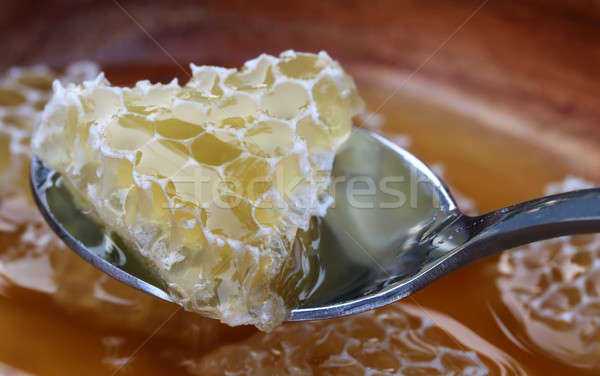 Piece of honey Comb with honey on spoon Stock photo © bdspn