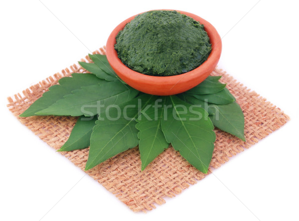 Vitex Negundo or Medicinal Nishinda leaves with paste Stock photo © bdspn