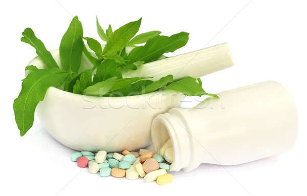 Mortar and pestle with medicinal herbs Stock photo © bdspn