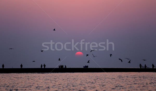 Gündoğumu Bangladeş uçan kuşlar plaj su Stok fotoğraf © bdspn