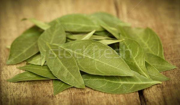 Henna levelek fából készült felület kéz test Stock fotó © bdspn