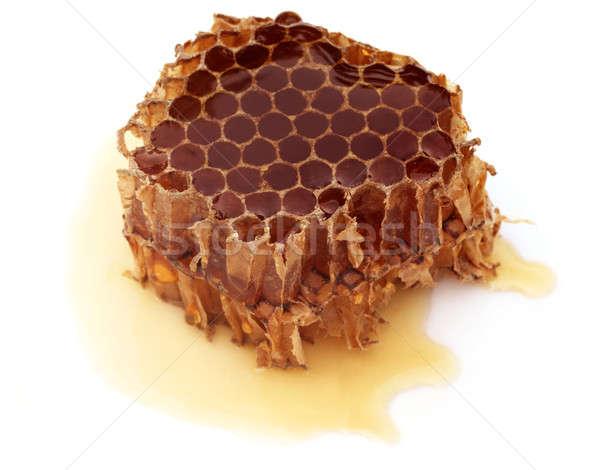 Honig Kamm weiß Essen Natur orange Stock foto © bdspn