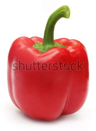 Red capsicum Stock photo © bdspn