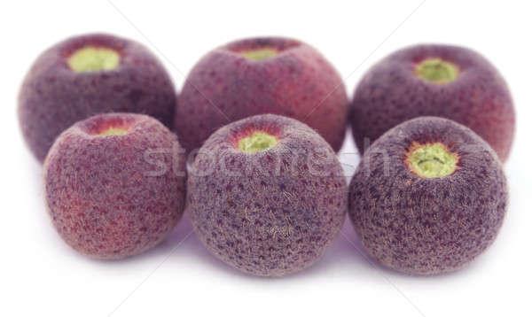 Grewia asiatica or Falsa fruits of Southeast Asia Stock photo © bdspn