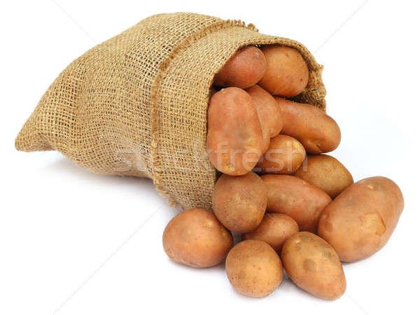 Potatoes in a sack bag Stock photo © bdspn
