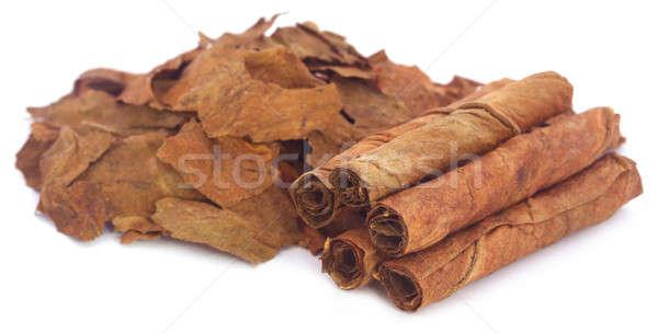 Photo stock: Sécher · tabac · laisse · blanche · feuille · ferme