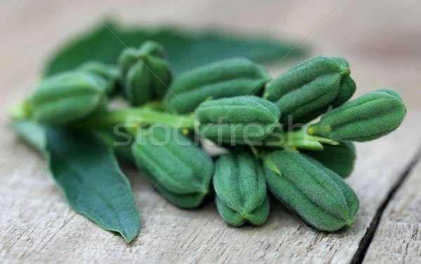 Verde gergelim superfície flor comida Foto stock © bdspn