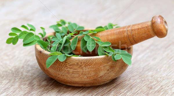 Moringa leaves and mortar pestle Stock photo © bdspn