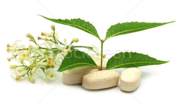 Pills with medicinal neem Stock photo © bdspn