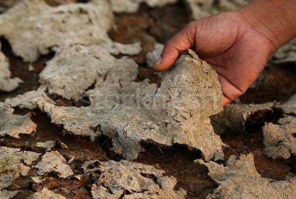 Gebarsten aarde droogte hand abstract woestijn Stockfoto © bdspn