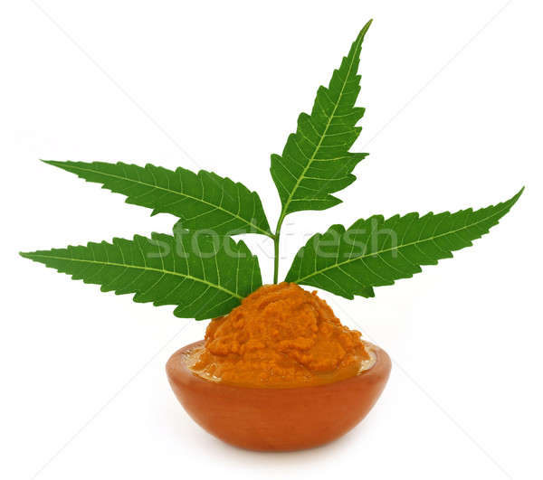 Turmeric paste with neem leaves Stock photo © bdspn