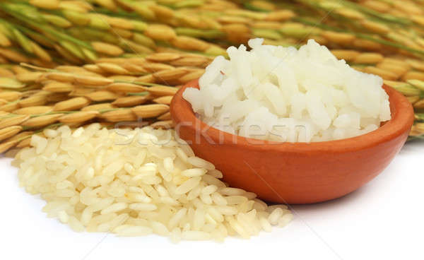 Golden paddy seeds with cooked rice Stock photo © bdspn