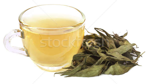 Ayurvedic medicinal Chirata with herbal tea Stock photo © bdspn