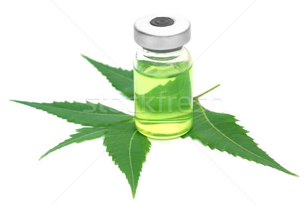 Neem leaves with vial extracted medicine Stock photo © bdspn