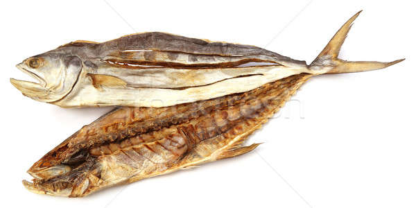 Dry tuna fish Stock photo © bdspn
