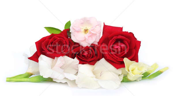 Bunch of gladiolus and rose Stock photo © bdspn