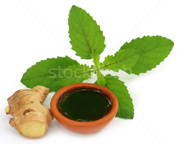 Ayurvedic combination of holy basil and ginger Stock photo © bdspn