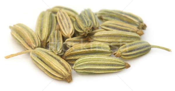 Finocchio semi bianco alimentare natura cottura Foto d'archivio © bdspn