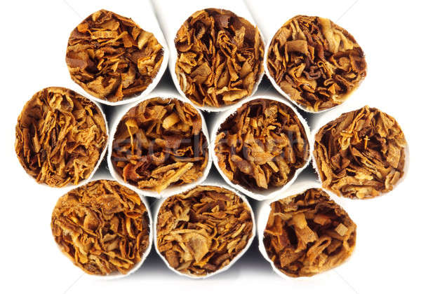 Foto stock: Cigarros · branco · projeto · fundo · morte
