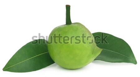 съедобный Бангладеш белый фрукты яйцо плодов Сток-фото © bdspn