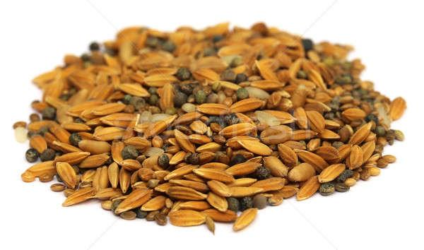Bird feeding grains Stock photo © bdspn