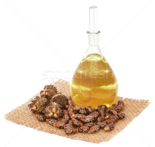 Castor oil with beans Stock photo © bdspn