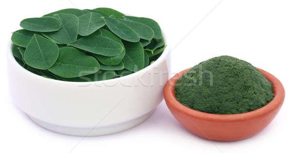 Foto d'archivio: Commestibile · foglie · terra · natura · vegetali · ceramica