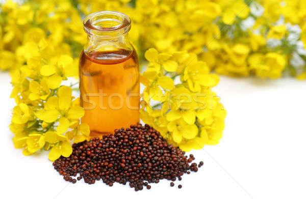 Stockfoto: Mosterd · olie · bloem · zaad · witte · cake