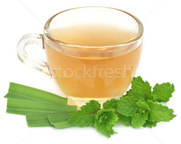 Chá medicinal copo ervas branco beber folhas Foto stock © bdspn
