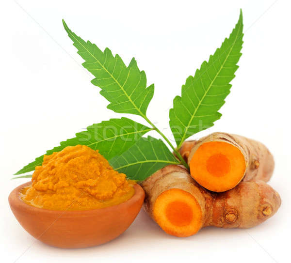 Turmeric with neem leaves Stock photo © bdspn