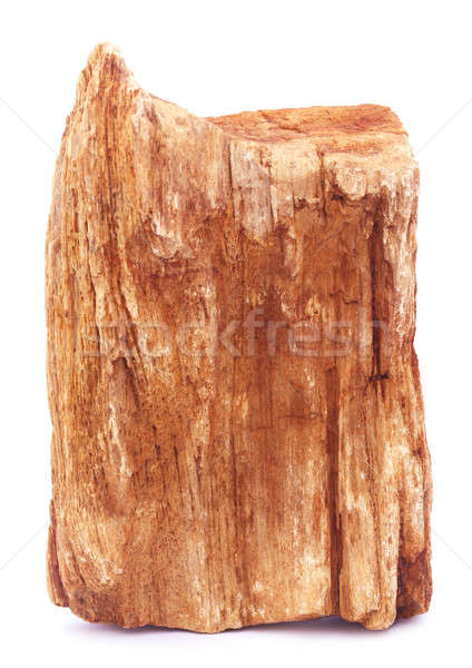Sedimentary rock Stock photo © bdspn