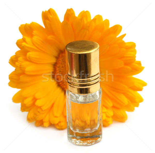 Closeup of calendula with essence bottle Stock photo © bdspn