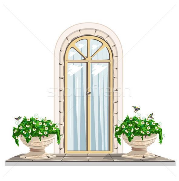 Deur bloemen glas architectuur patroon mooie Stockfoto © bedlovskaya