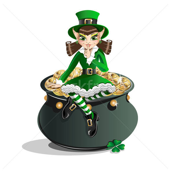 St. Patrick's Day. Leprechaun girl and a pot of gold Stock photo © bedlovskaya