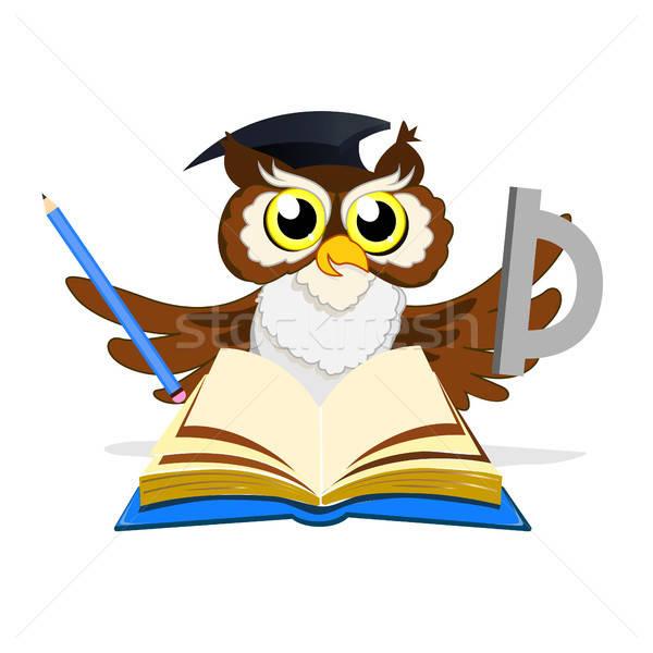 школы совы книгах студент птица Сток-фото © bedlovskaya