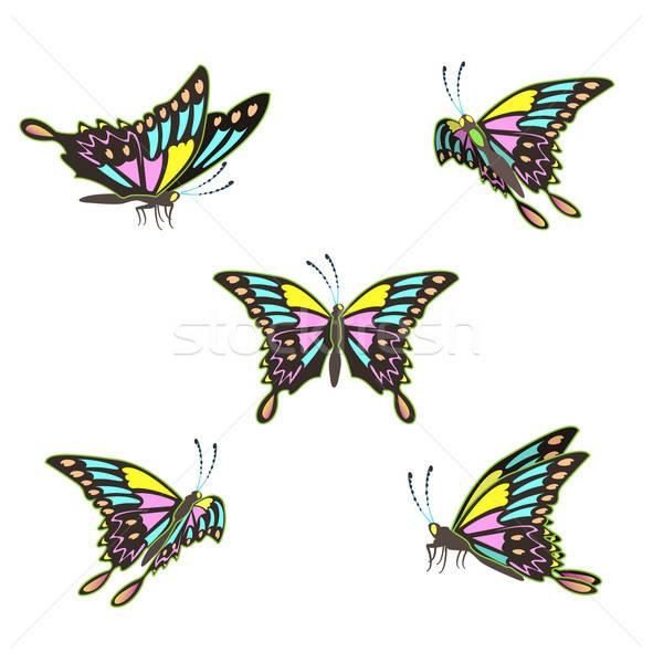 Vlinders geïsoleerd witte ingesteld vlinder leuk Stockfoto © bedlovskaya
