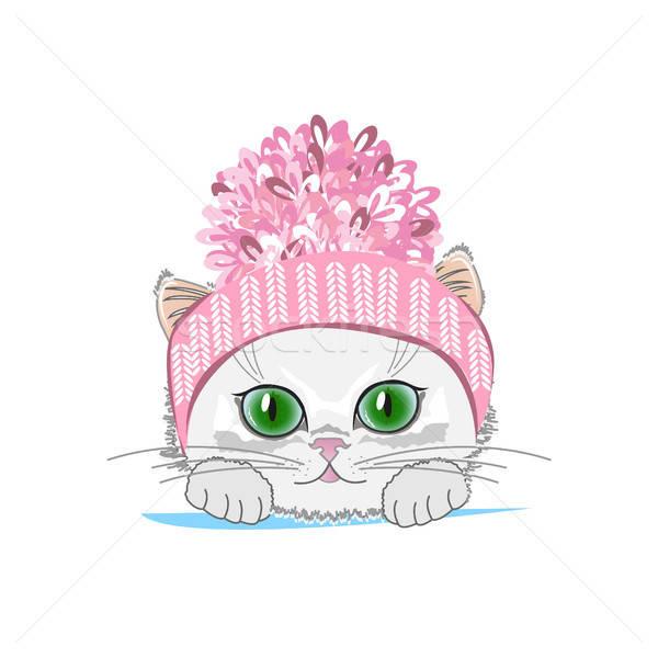 Cute cat in a winter hat with bubo Stock photo © bedlovskaya