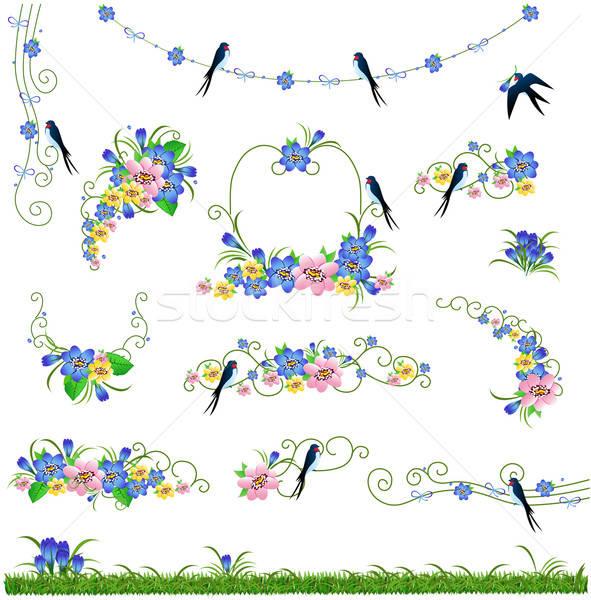 Fiori erba uccello frame set fiore Foto d'archivio © bedlovskaya