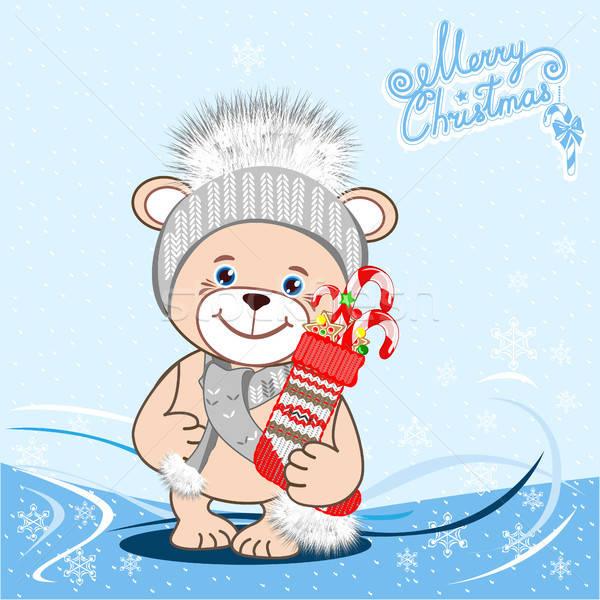 Teddy bear in hat Stock photo © bedlovskaya