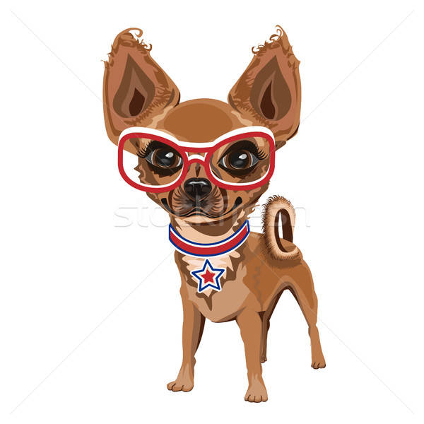 Little doggy in glasses Stock photo © bedlovskaya
